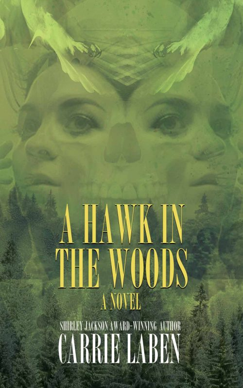 A Hawk in the Woods